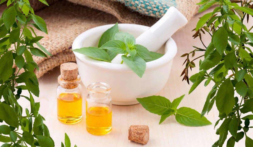CBD Dog Health Essential Oils for Dogs