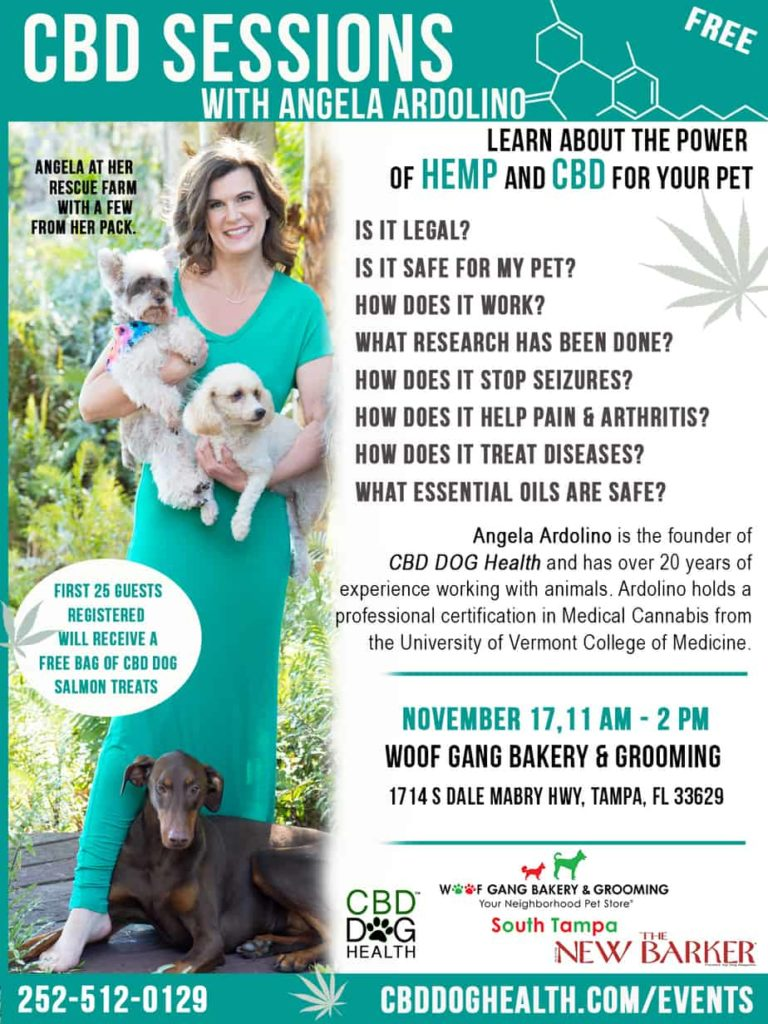 Woof Gang Bakery S Tampa CBD SESSIONS WITH ANGELA ARDOLINO