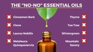 The no no essential list