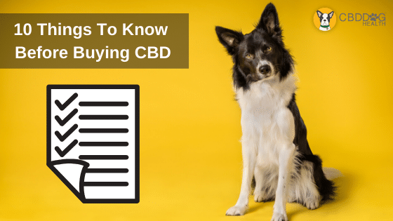10 Things To Know Before Buying CBD