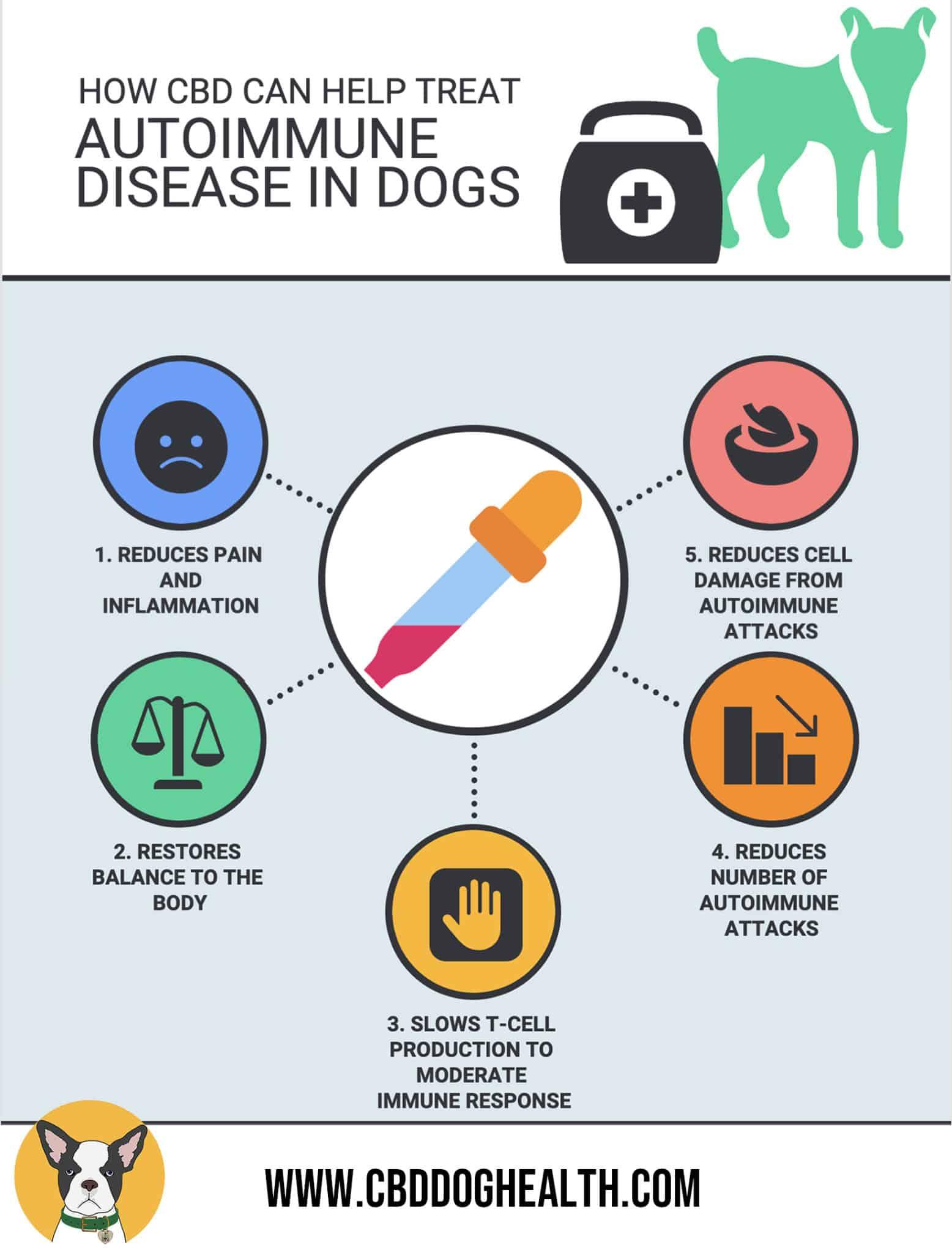 AUTOIMMUNE DISEASES CBD DOG HEALTH