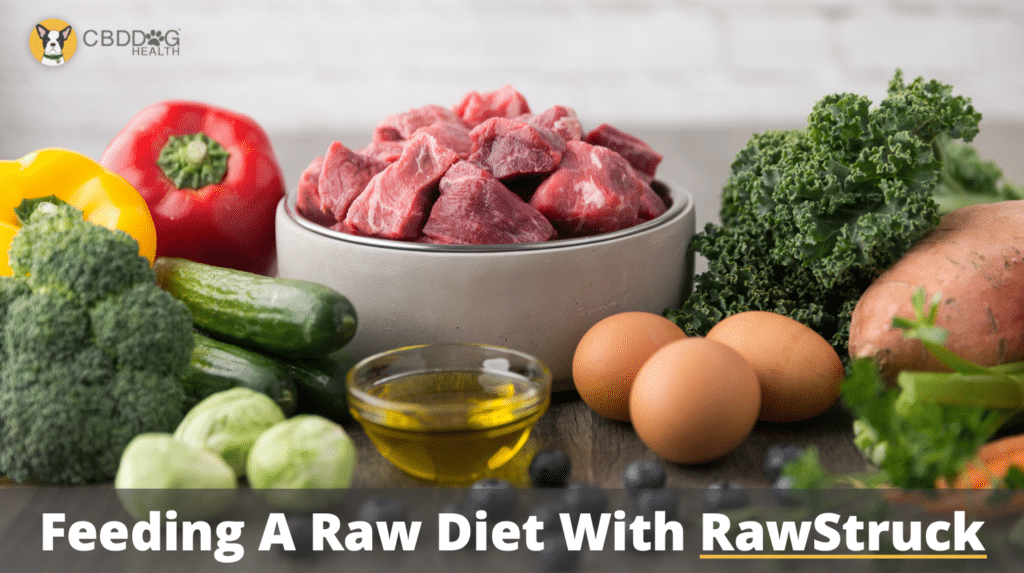 The Steps To Feeding A Raw Diet
