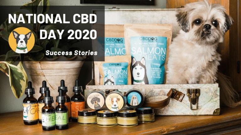 National CBD Day 2020