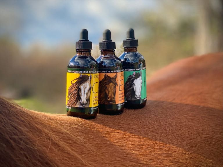Tinctures on Horse Back