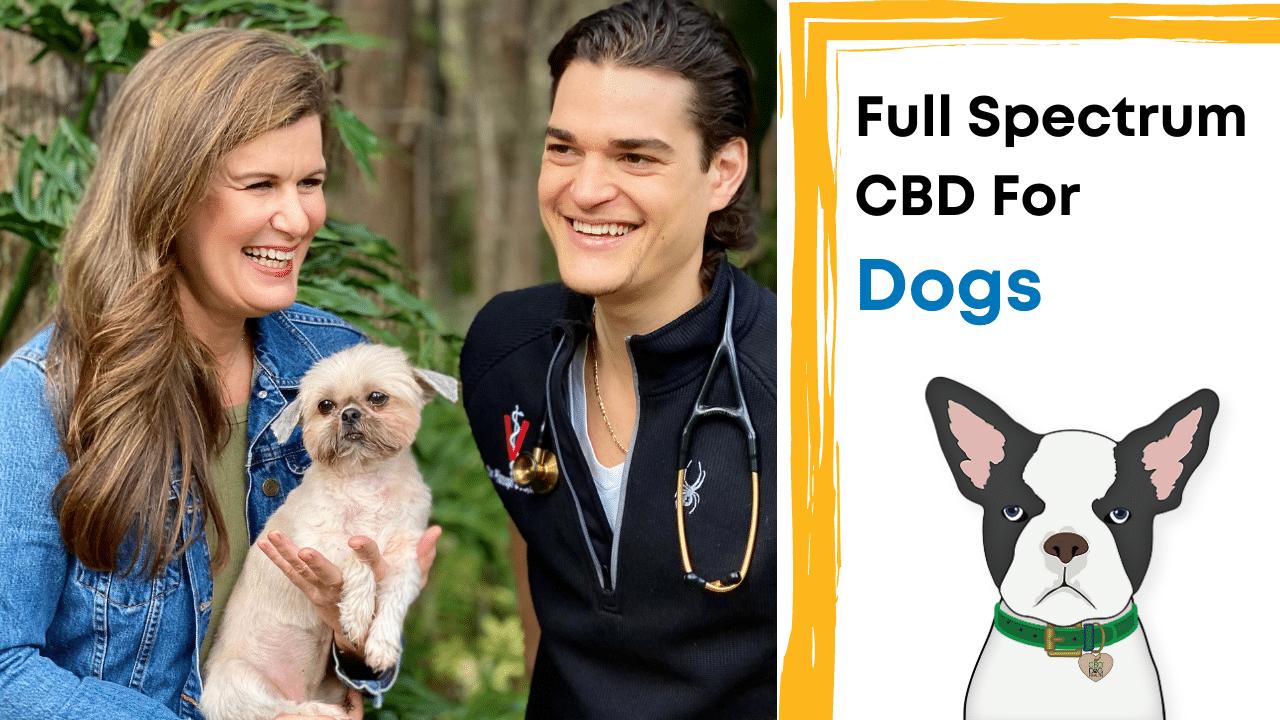 Full Spectrum CBD For Dogs