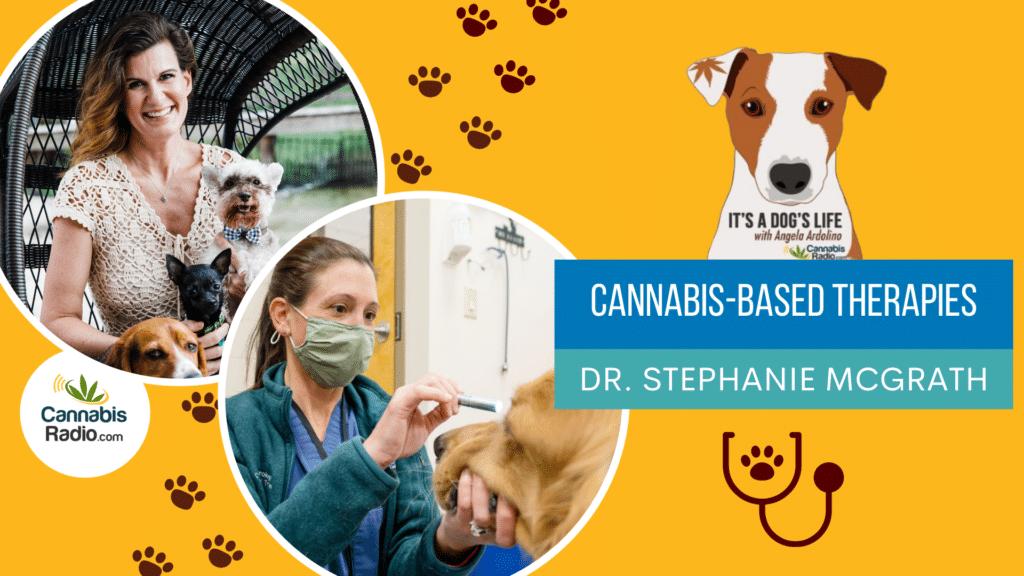 Podcast with Dr. Stephanie McGrath