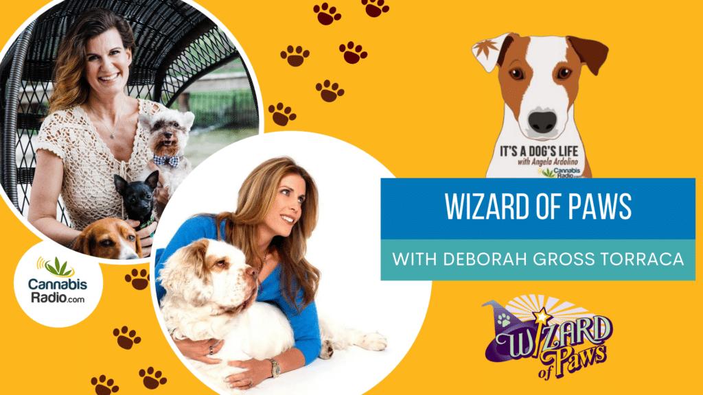 Podcast with Deborah Gross Torraca - CBD Dog Health