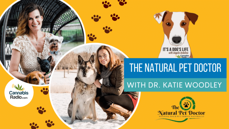 The Natural Pet Doctor with Founder Dr. Katie Woodley
