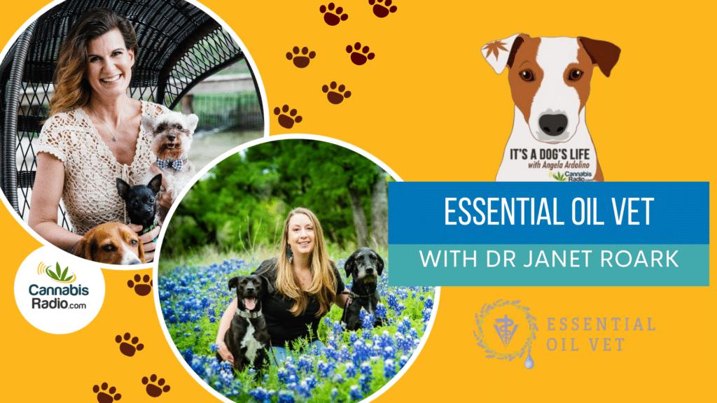 podcast dr janet roark essential oil vet