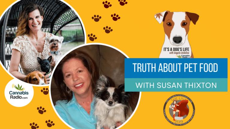 Susan Thixton on It's A Dog's Life